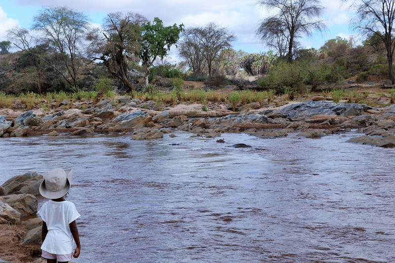 galana river hippos