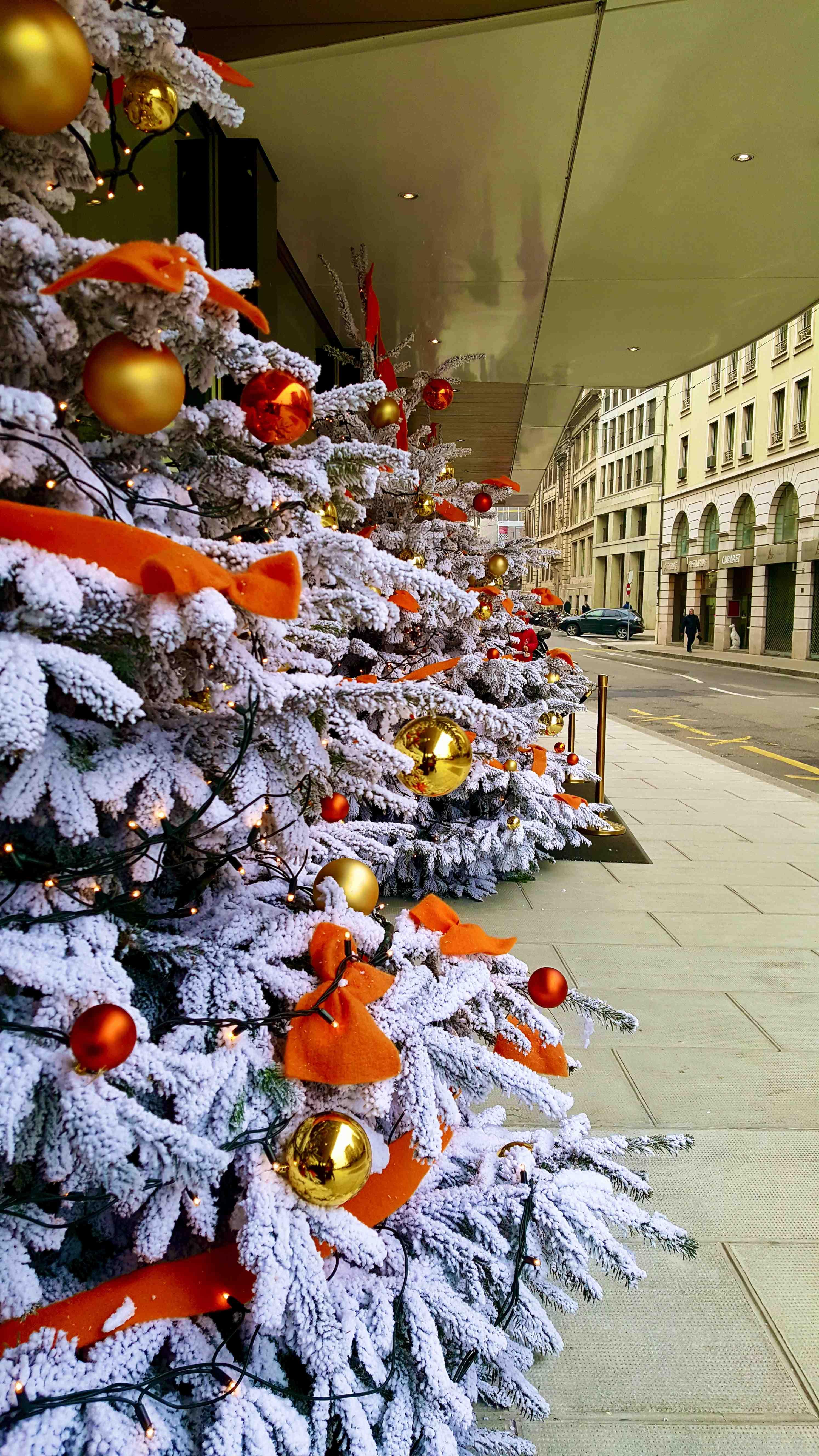 geneva christmas